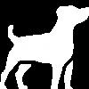 Bi-pro tassalva med kåda – burk